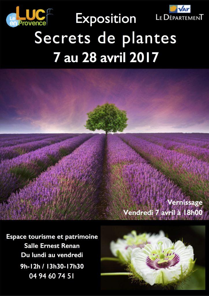Du 7 au 28 avril, Exposition « Secrets de plantes »