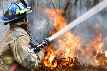 Incendie en bordure de la RD 33 – Rectificatif