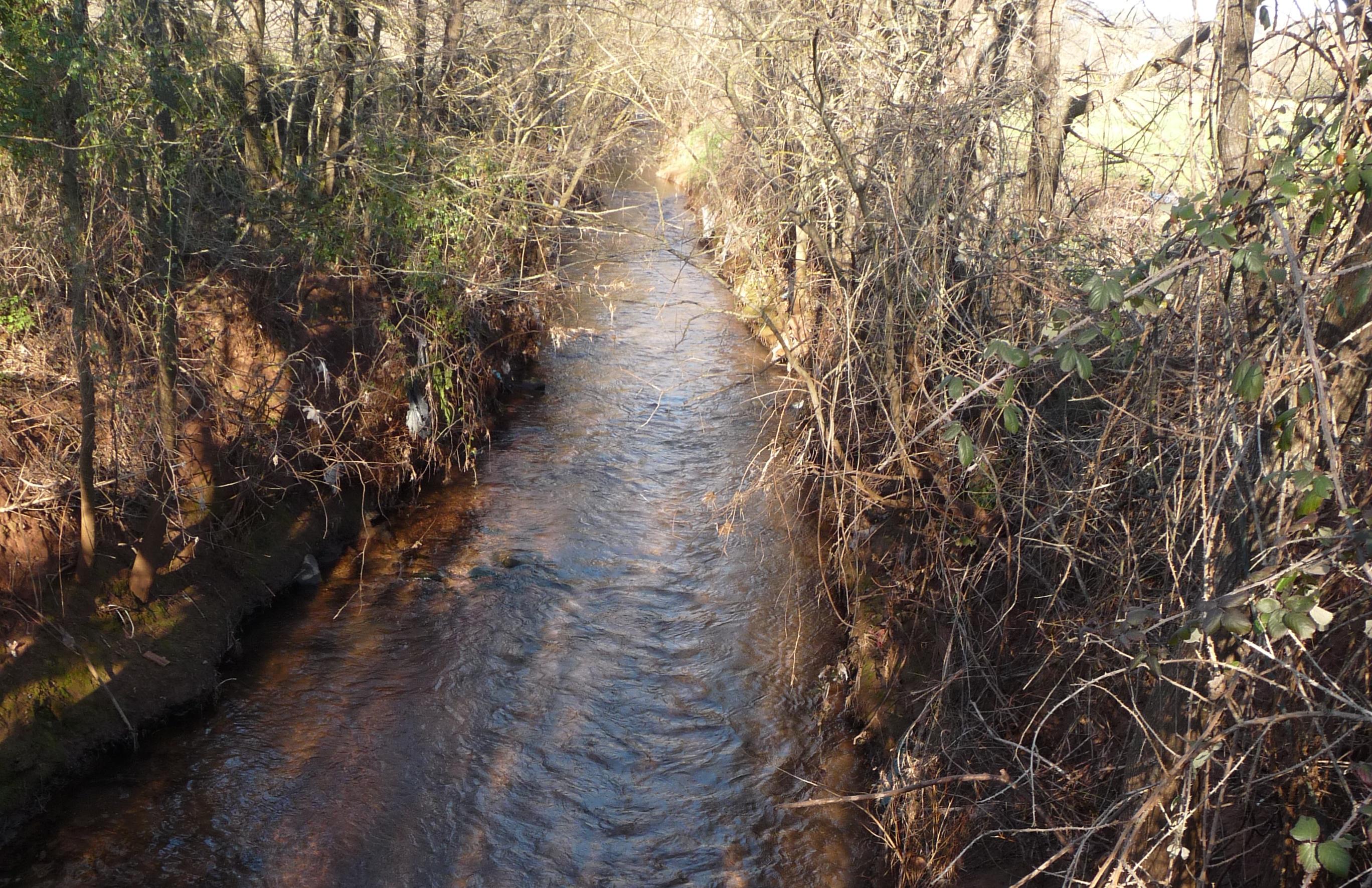 Nettoyage des ruisseaux le long de la RN 97