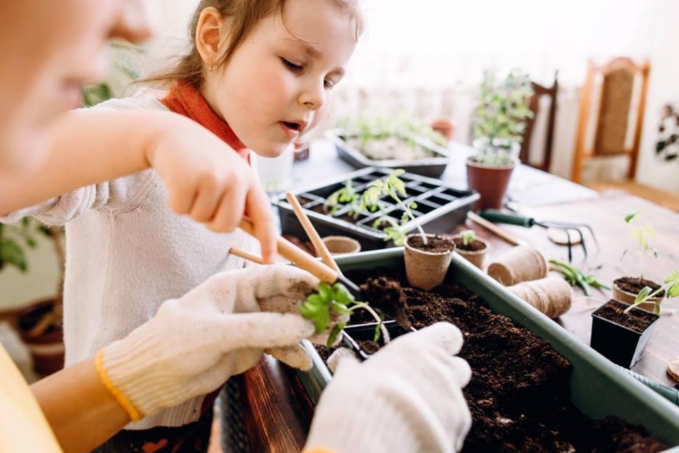Ateliers « Parents-Enfants, Ensemble les mains dans la terre » chaque mercredi !