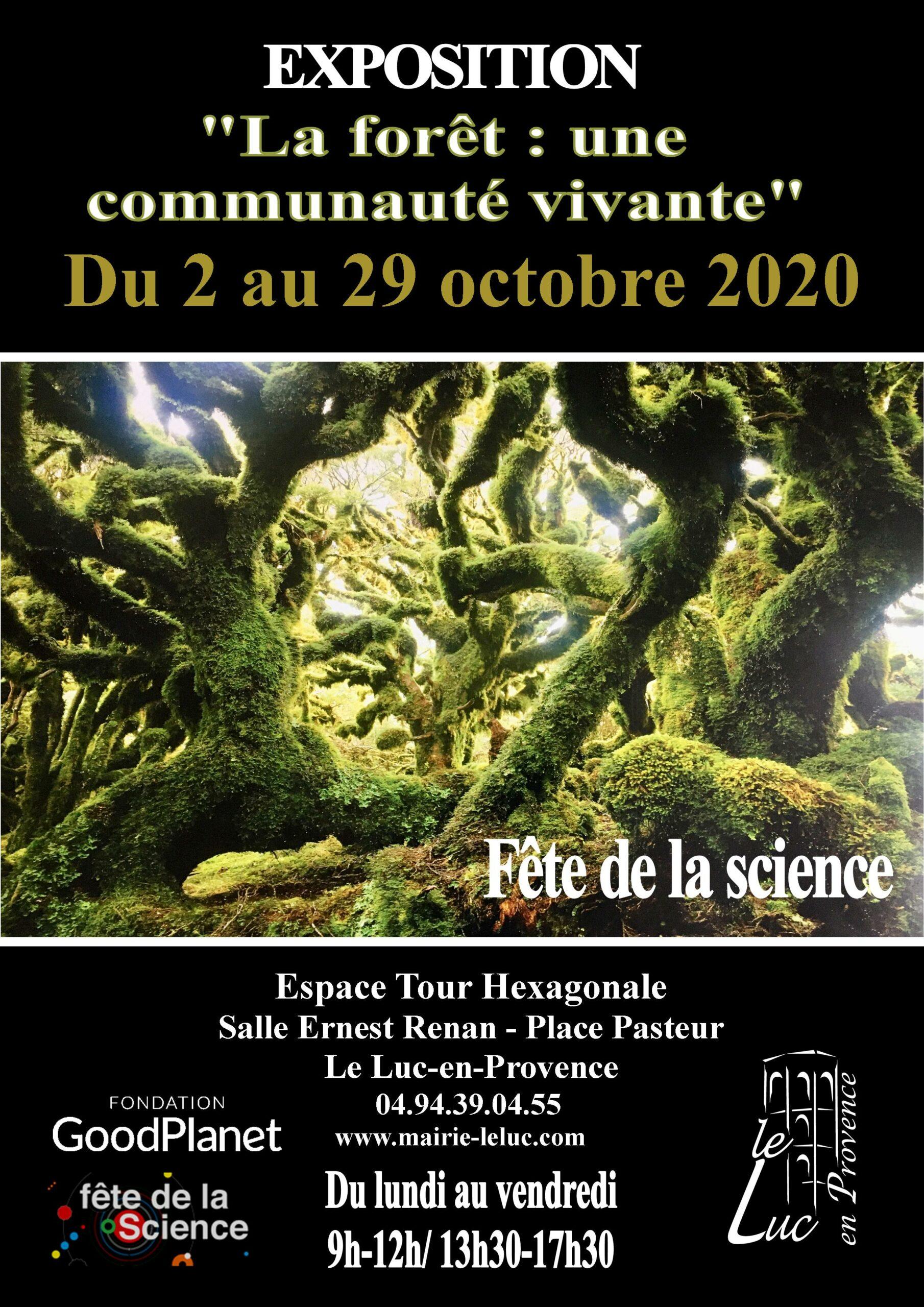 Jusqu'au 29 octobre, Exposition «La forêt une communauté vivante »
